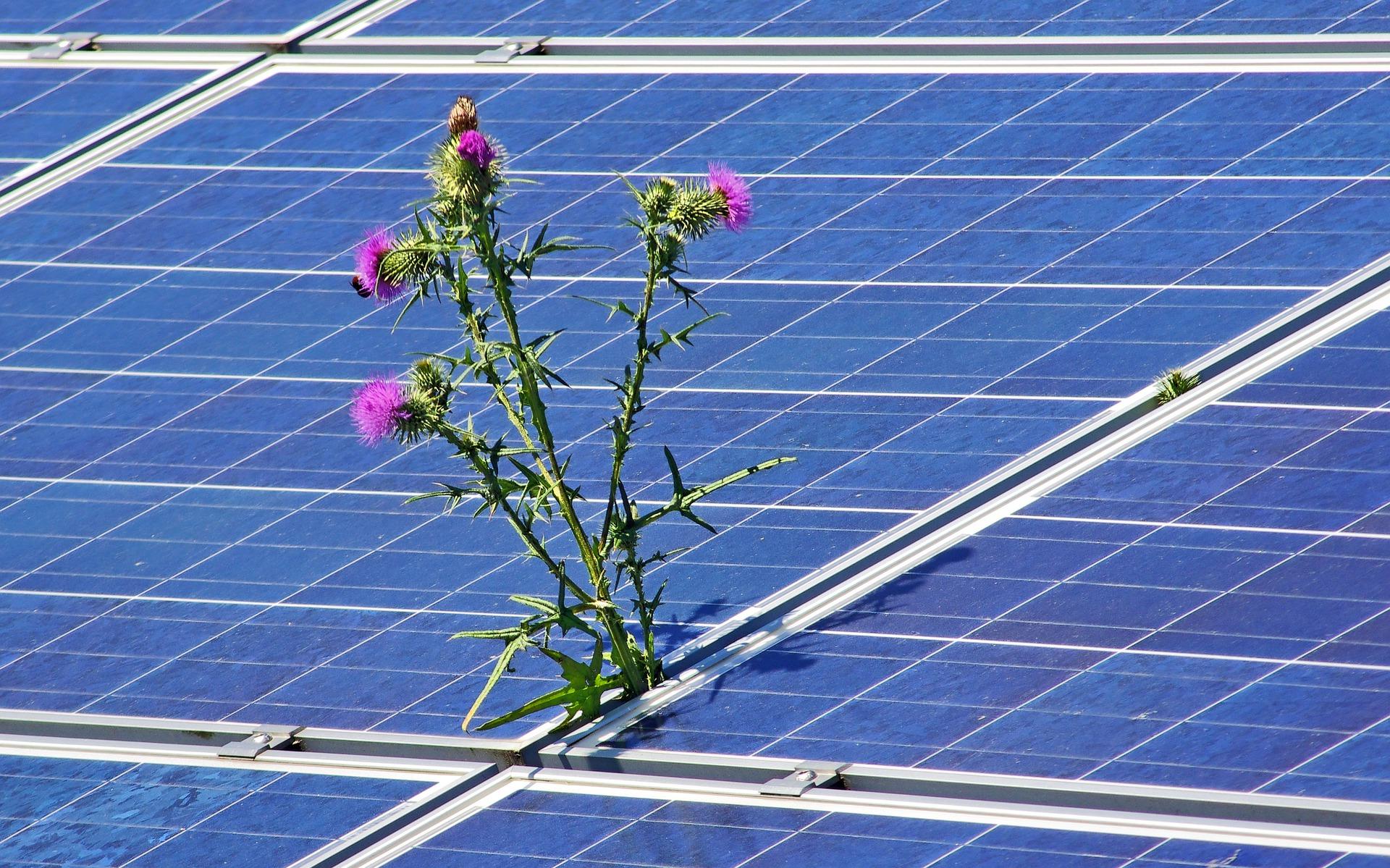 photovoltaic-4244774_1920